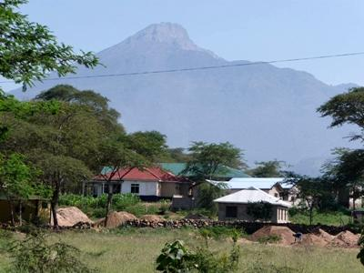 carry on temporary assignment visa tanzania