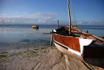 Tanzanian coast