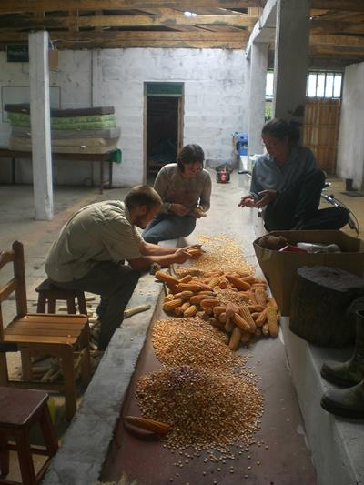 Gap Year volunteer Archaeology projects in Peru