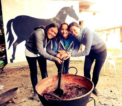 Equine Therapy projects in Argentina