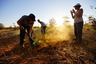 Projects Abroad volunteers work to remove alien plant life at their conservation placement in Botswana