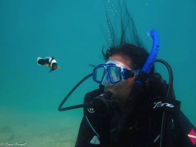 A Projects Abroad Marine Conservation volunteer explores the underwater world of the Koh Sdach Archipelago during a dive at her project in Cambodia