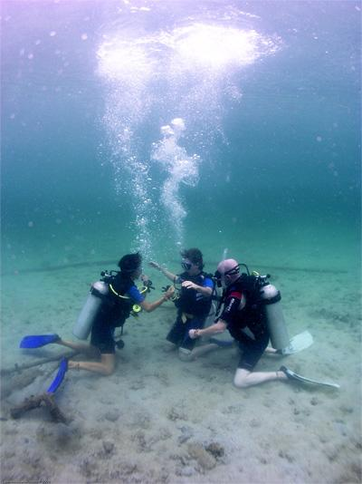 Volunteers diving in a conservation project in Cambodia, Asia