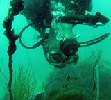 Dive Against Debris Survey 2013 - 2014