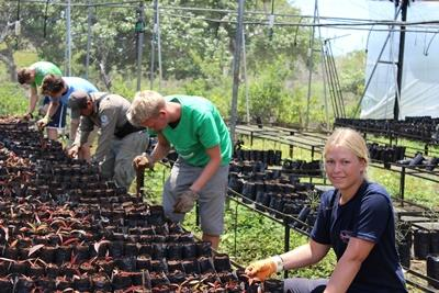 Volunteers working at a conservation project in Ecuador