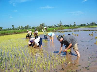 Projects Abroad volunteers on the Khmer Culture & Community project in Cambodia