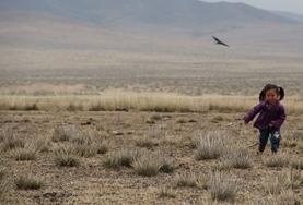 A young Mongolian child from one of our nomad host families chases a bird through a field.
