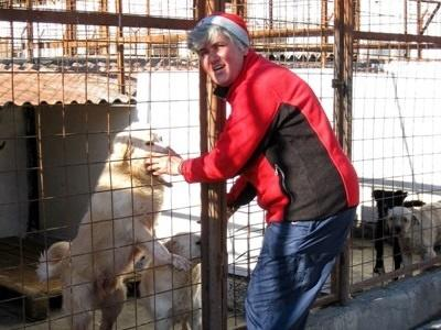 Gap Year Animal Care in Romania