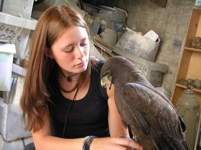 A Projects Abroad volunteer works overseas with a bird on an Animal Care project in Mexico