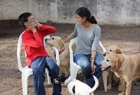 A disabled boy and a Canine Therapy volunteer work together with dogs during a specialised therapy session in Argentina.