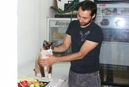 A Veterinary Medicine volunteer assist with treating a cat at his placement in Mexico.