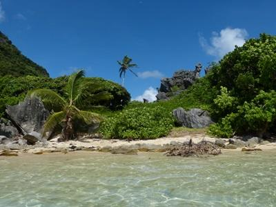 Volunteer in the South Pacific